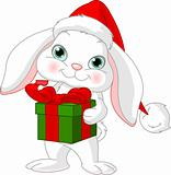 Little rabbit with Christmas gift