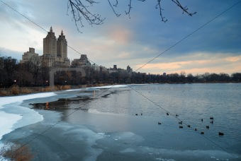 Central Park in Winter, New York City