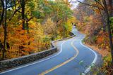 Winding Autumn road with colorful foliage