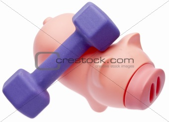 Cost of Working Out