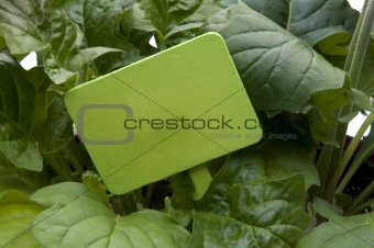 Green Garden Stake with Leaves
