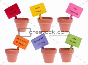 Group of Clay Pots with Vibrant Colored Signs