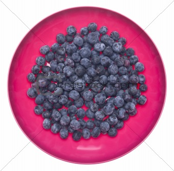 Fresh Blueberries in a Vibrant Pink Bowl