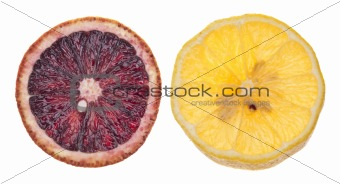 Slices of Lemon and Blood Orange