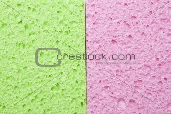 Green and Pink Sponge