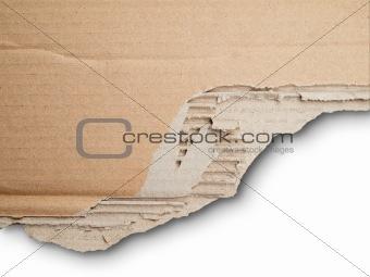 Torn card board paper