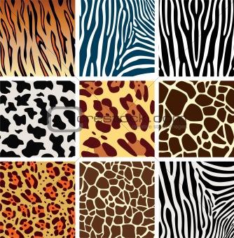 animal skin textures