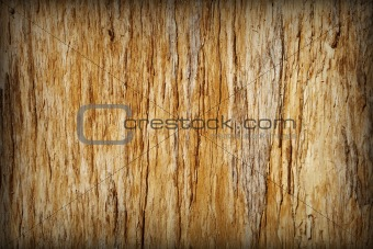Background - brown rotten tree with cracks