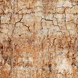 Seamless texture - cracked clay ground