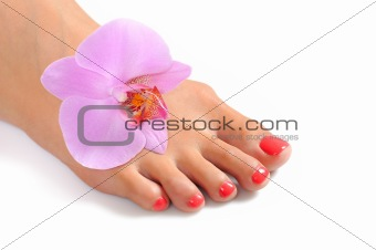 Beautiful feet leg with perfect spa pedicure on bright pink nails