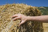 Hand on a rolling haystack.
