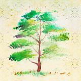 tree , very elegantly drawn