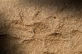 Granite rock surface lit diagonally