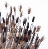 brushes