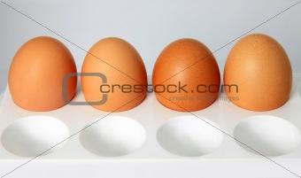 Four isolated eggs
