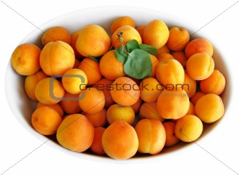 Apricots on white tray.