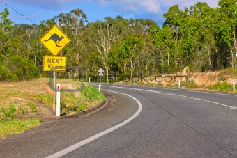 Australian kangaroo warning sign on the side of a road
