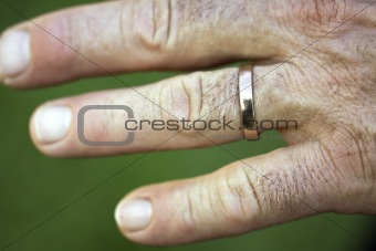 Image 3196189 Hand of a man with a golden wedding ring on his ring