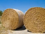 Rolling Haystack. Apulia.