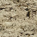 Seamless texture - natural stone