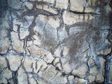 Wall plastered wet cement texture