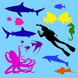 ocean's life