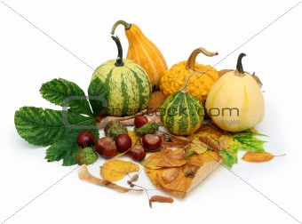Autumn collection 1