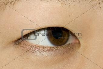 382 Asian Eye