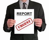 Businessman Presentation (Report)