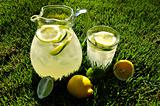Afternoon Lemonade