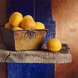 Apricots still life