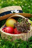 Basket with apples and herbs