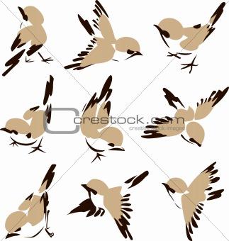bird in different style