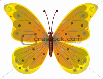 A beautiful red butterfly isolated.  EPS10 Vector