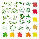 Collection of colored leaves to the design
