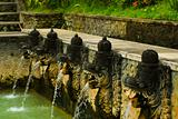 Balinese Hot Spring Fountains Heads