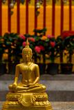 Golden Buddha Statue Thailand