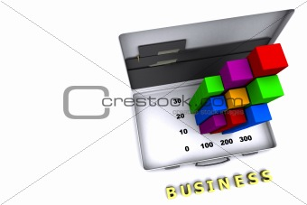 Business Report Briefcase
