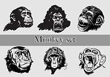 Monkey Head. Vector