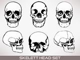 Skelett head vector.