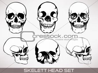 Skelett head vector.