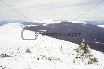 Carpathians mountain in winter