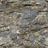 Seamless texture - natural rough stone
