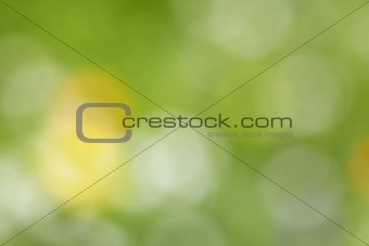 Abstract color background - out-of-focus photo of meadow