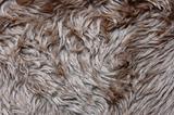 pelt texture