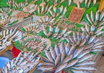Fresh fish at a market