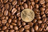 coin on coffee beans background
