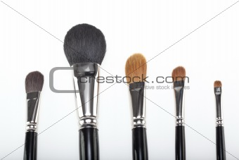 a set of 5 make-up brushes