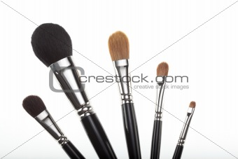 a set of 5 make-up brushes in a fan composition.