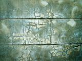 green wall plastered wet cement
